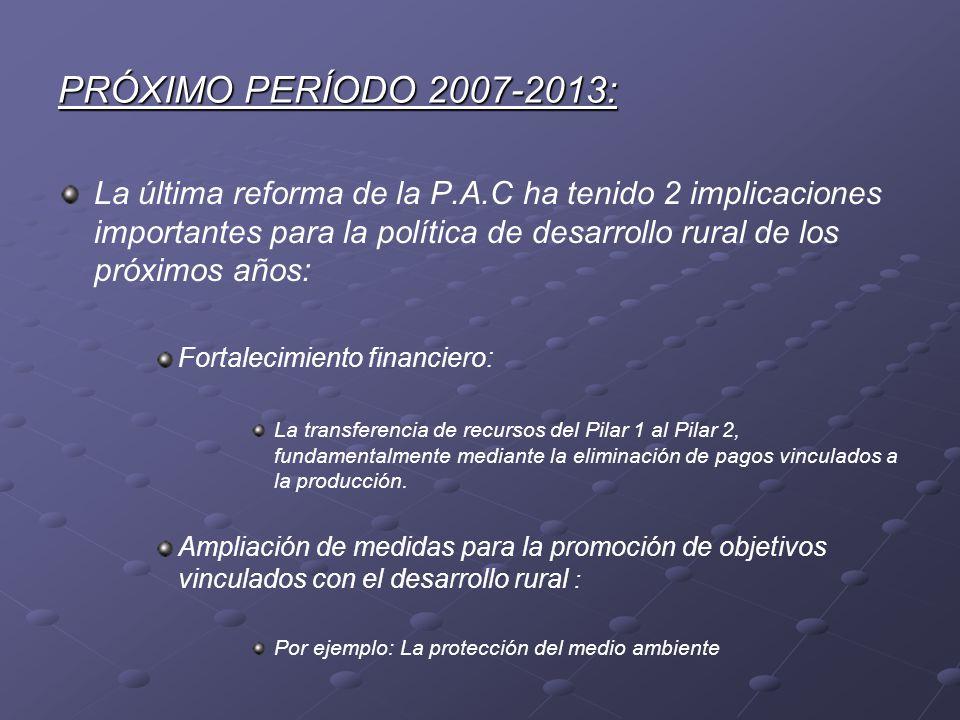 PRÓXIMO PERÍODO 2007-2013: