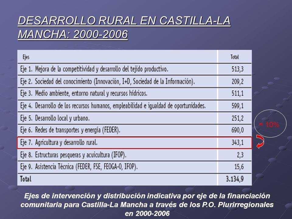 DESARROLLO RURAL EN CASTILLA-LA MANCHA: 2000-2006