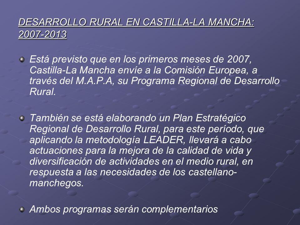 DESARROLLO RURAL EN CASTILLA-LA MANCHA: 2007-2013