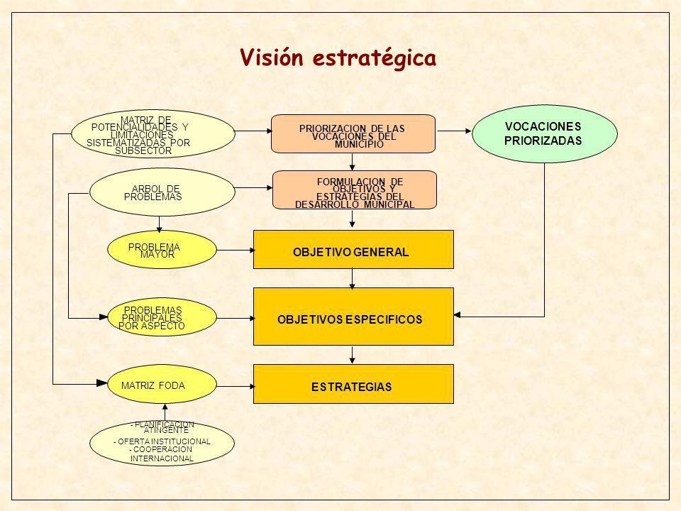 Visión estratégica VOCACIONES PRIORIZADAS OBJETIVO GENERAL