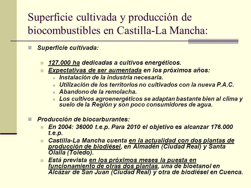 Superficie cultivada y producción de biocombustibles en Castilla-La Mancha: