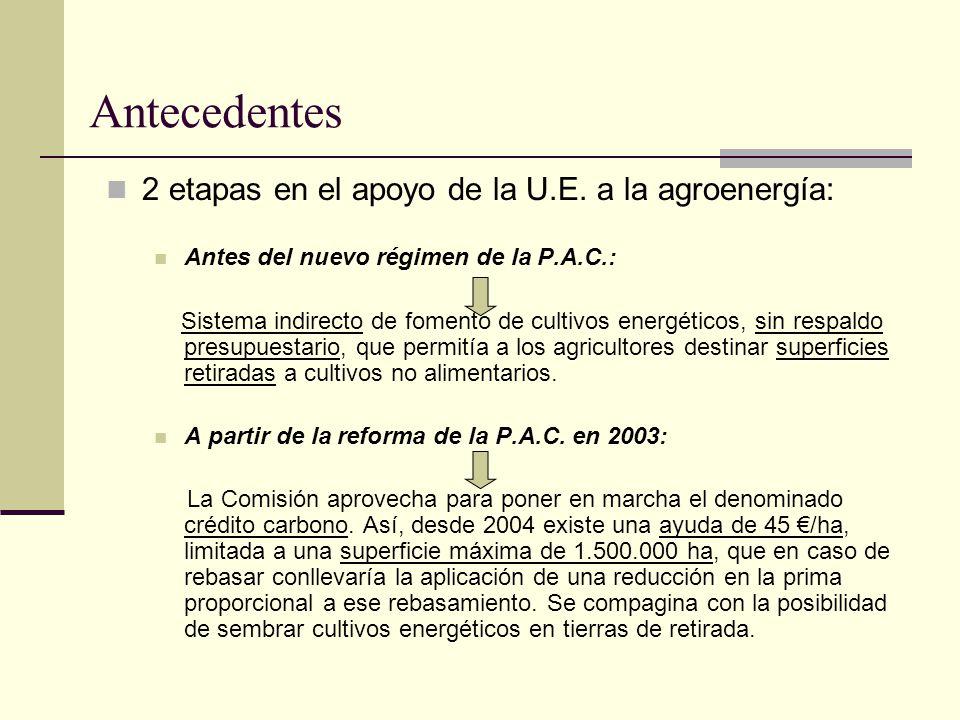 Antecedentes 2 etapas en el apoyo de la U.E. a la agroenergía: