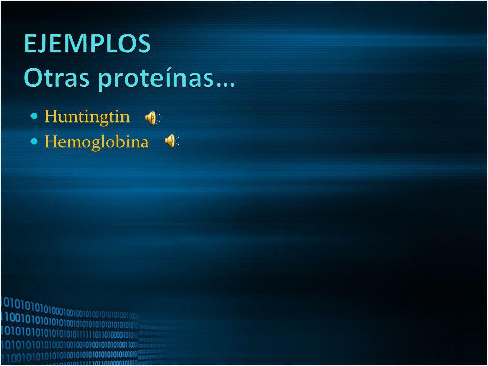 EJEMPLOS Otras proteínas… Huntingtin Hemoglobina