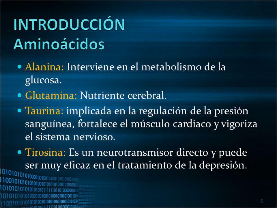 INTRODUCCIÓN Aminoácidos