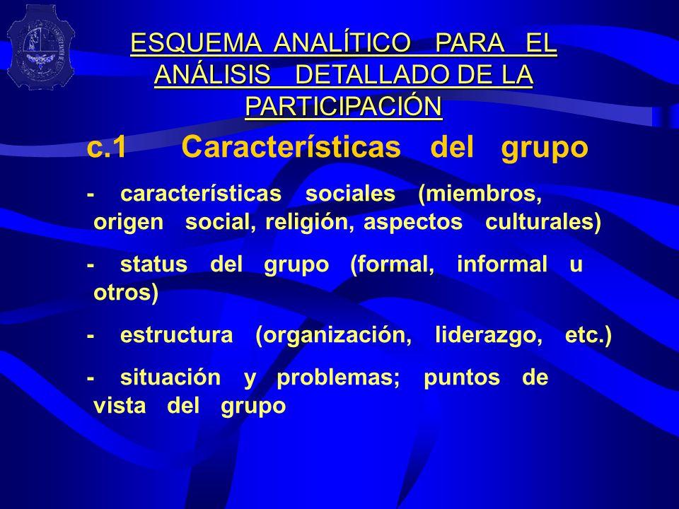 ESQUEMA ANALÍTICO PARA EL ANÁLISIS DETALLADO DE LA PARTICIPACIÓN
