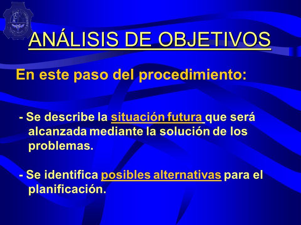 ANÁLISIS DE OBJETIVOS En este paso del procedimiento: