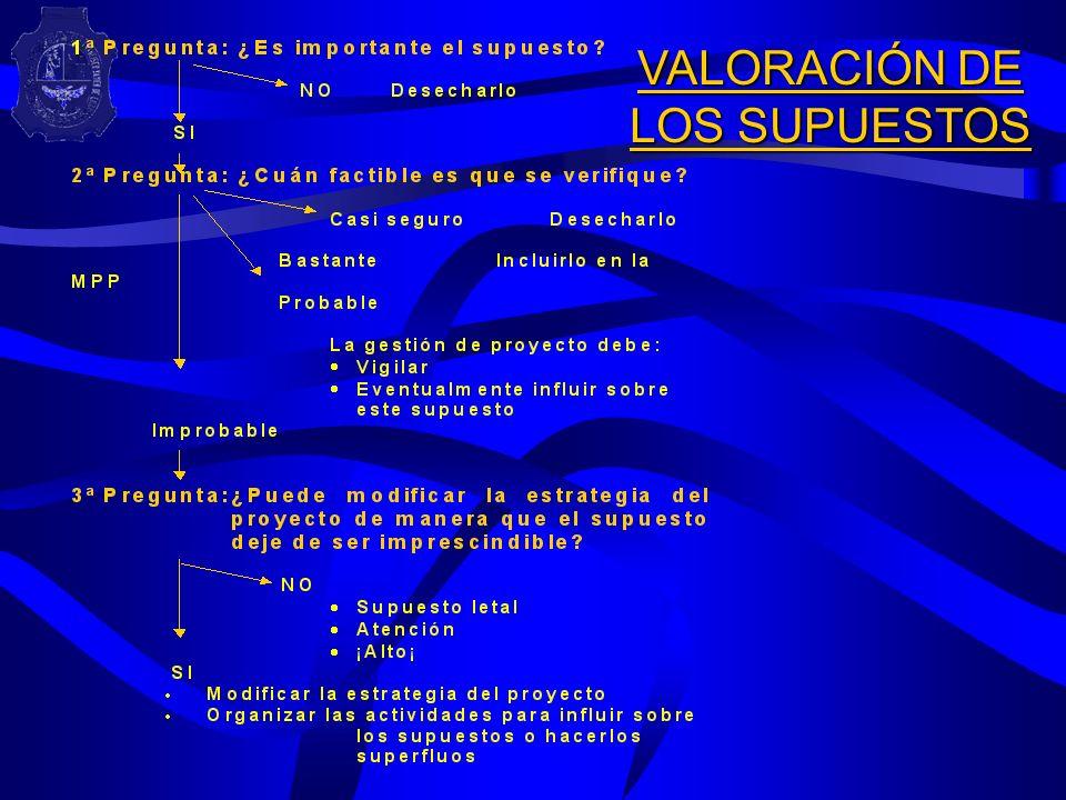 VALORACIÓN DE LOS SUPUESTOS