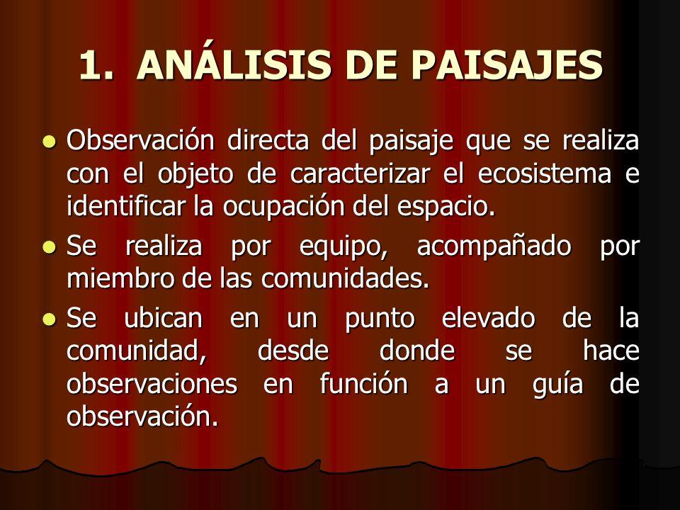ANÁLISIS DE PAISAJES