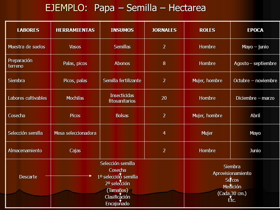 EJEMPLO: Papa – Semilla – Hectarea