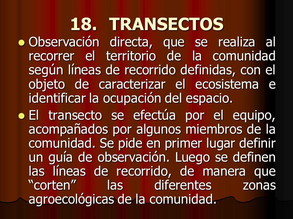 18. TRANSECTOS