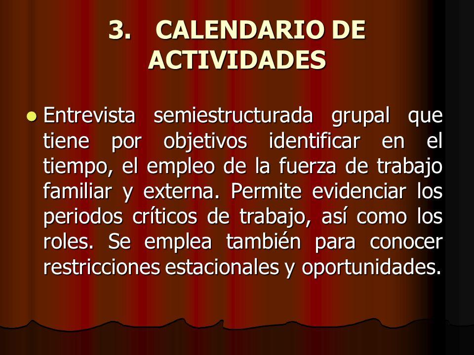 3. CALENDARIO DE ACTIVIDADES
