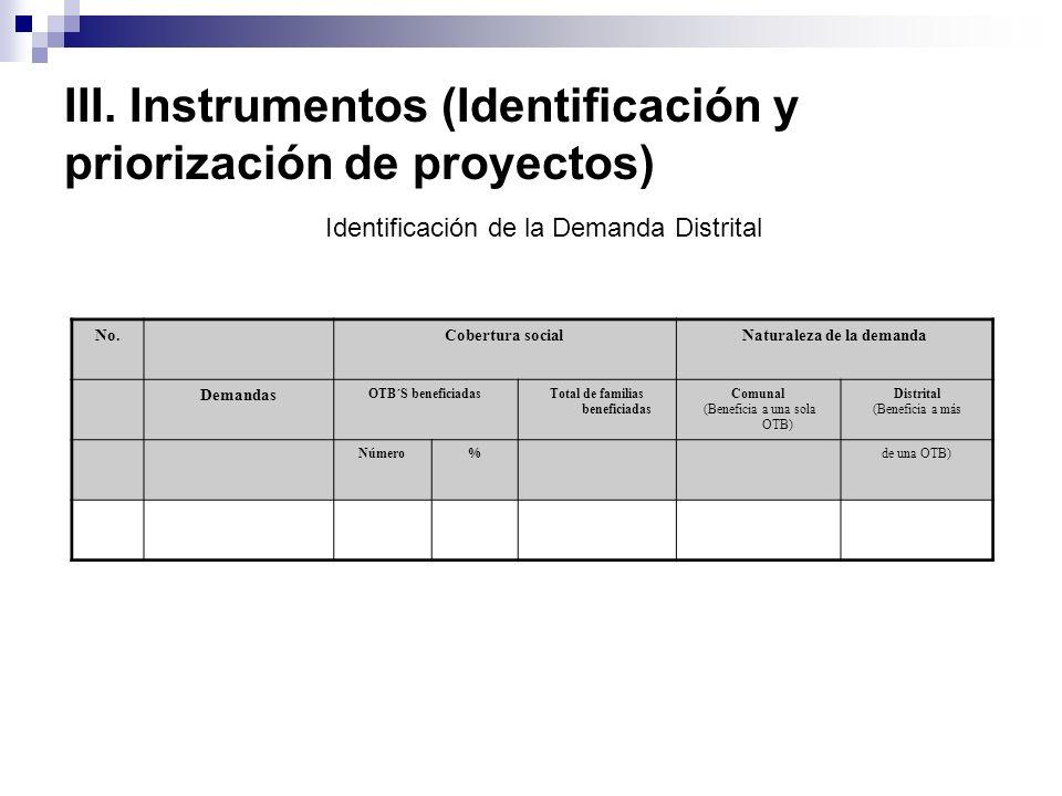III. Instrumentos (Identificación y priorización de proyectos)