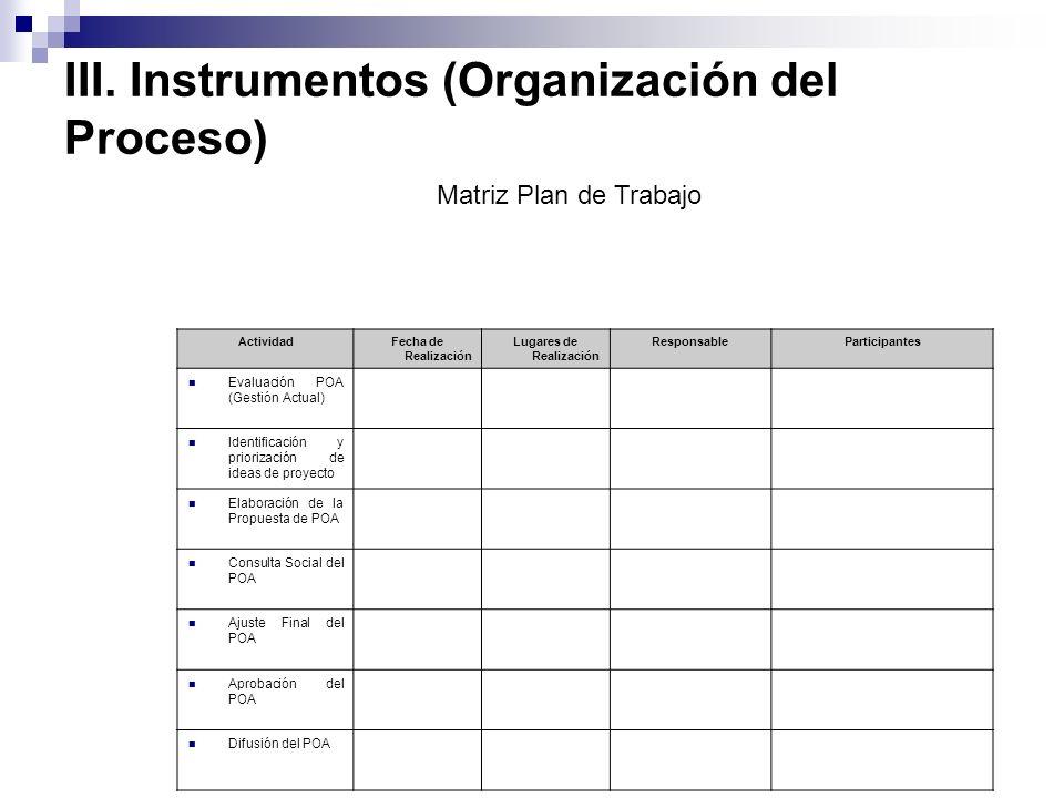 III. Instrumentos (Organización del Proceso)