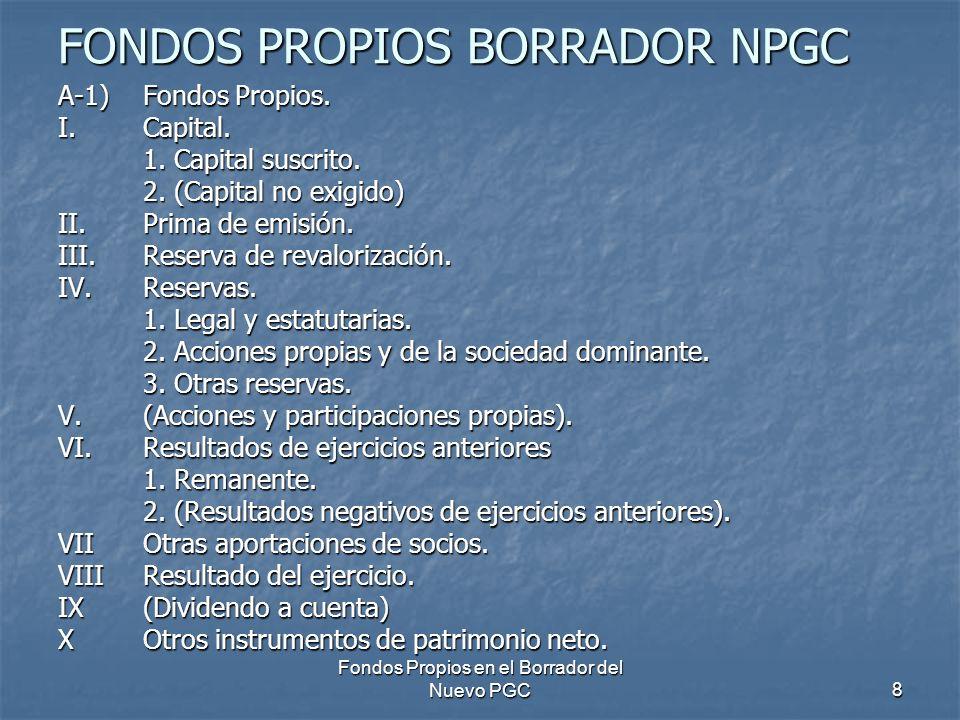 FONDOS PROPIOS BORRADOR NPGC