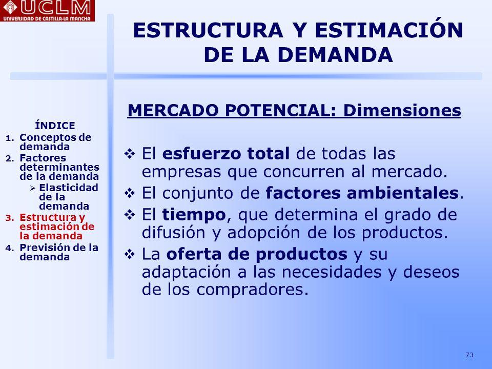 ESTRUCTURA Y ESTIMACIÓN DE LA DEMANDA MERCADO POTENCIAL: Dimensiones