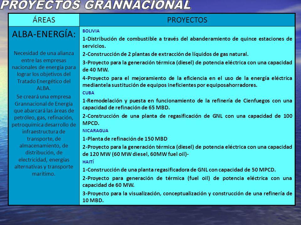 PROYECTOS GRANNACIONAL