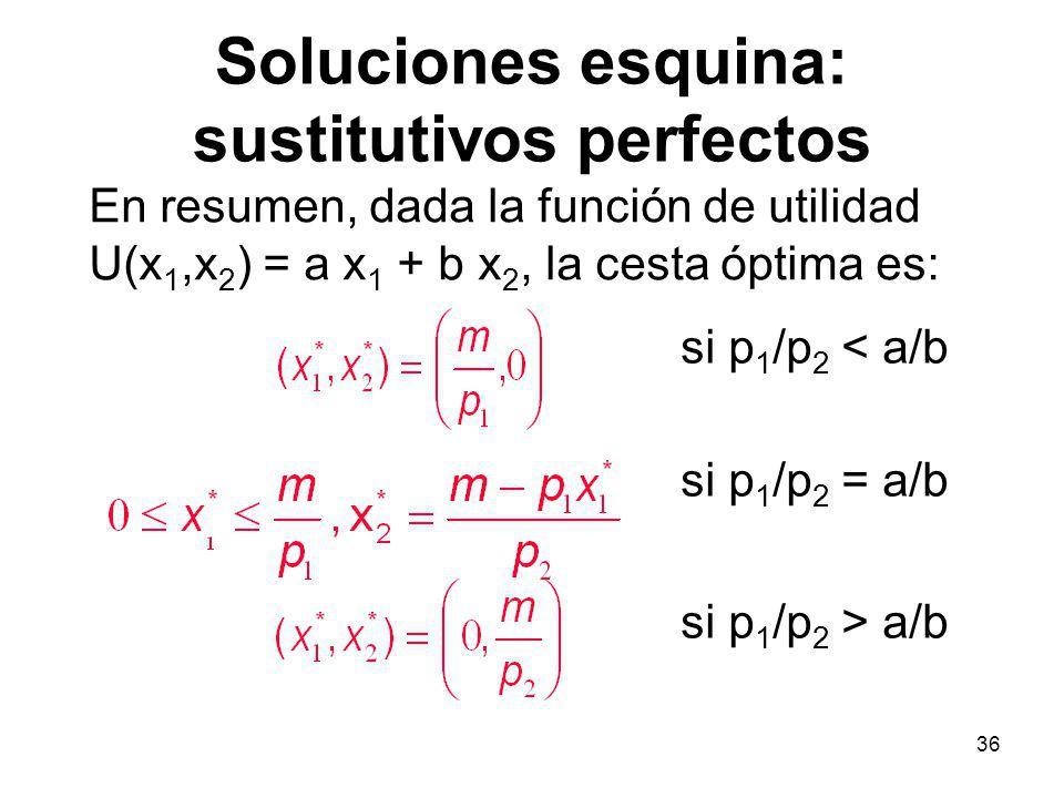 Soluciones esquina: sustitutivos perfectos