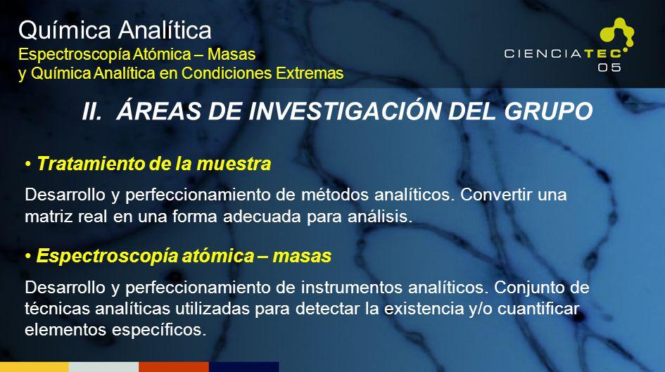 II. ÁREAS DE INVESTIGACIÓN DEL GRUPO