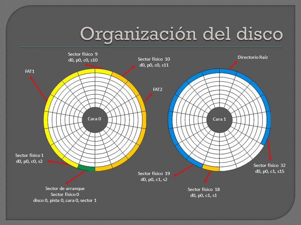 Organización del disco