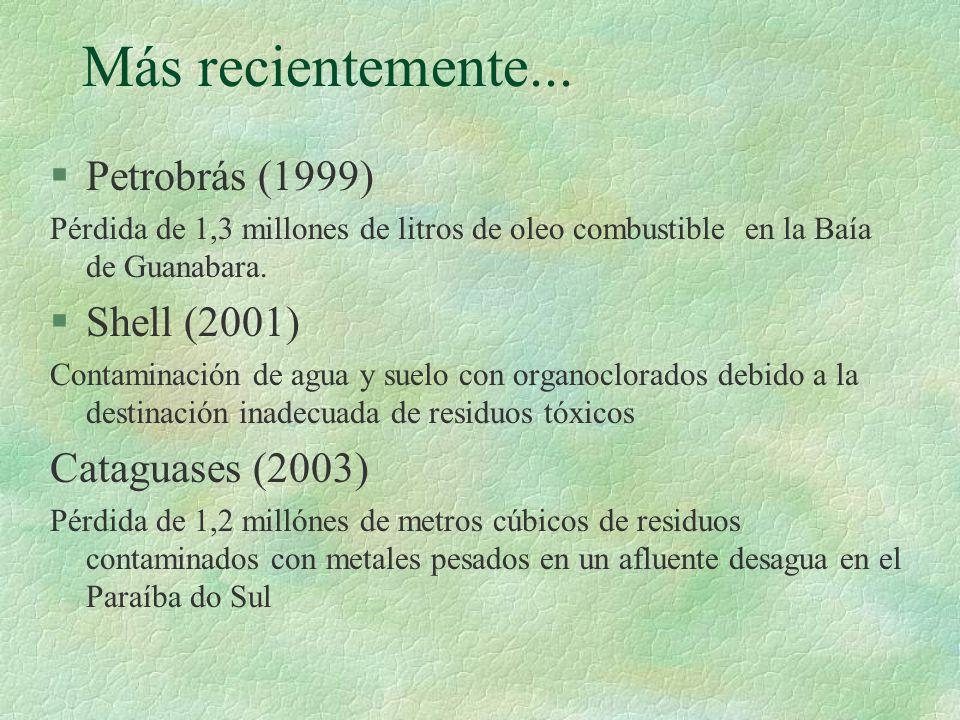 Más recientemente... Petrobrás (1999) Shell (2001) Cataguases (2003)