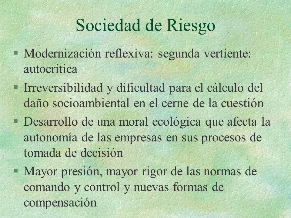 Sociedad de Riesgo Modernización reflexiva: segunda vertiente: autocrítica.