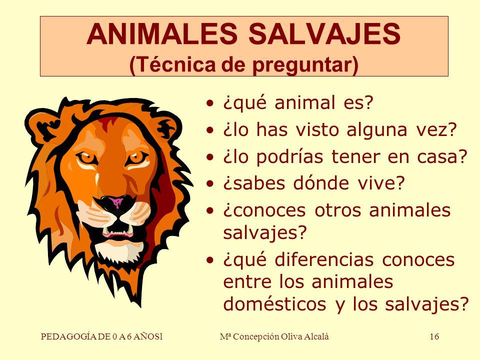 ANIMALES SALVAJES (Técnica de preguntar)