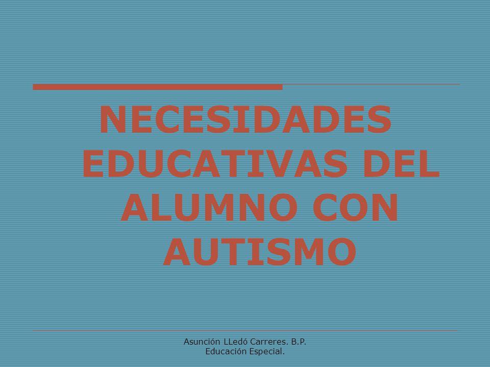 NECESIDADES EDUCATIVAS DEL ALUMNO CON AUTISMO