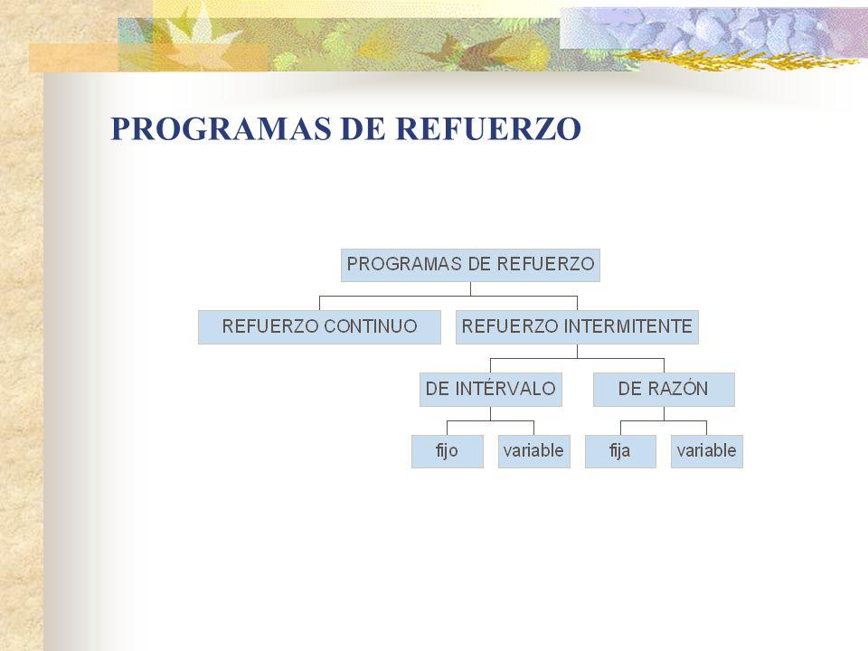 PROGRAMAS DE REFUERZO