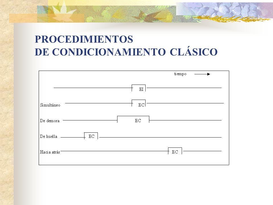 PROCEDIMIENTOS DE CONDICIONAMIENTO CLÁSICO