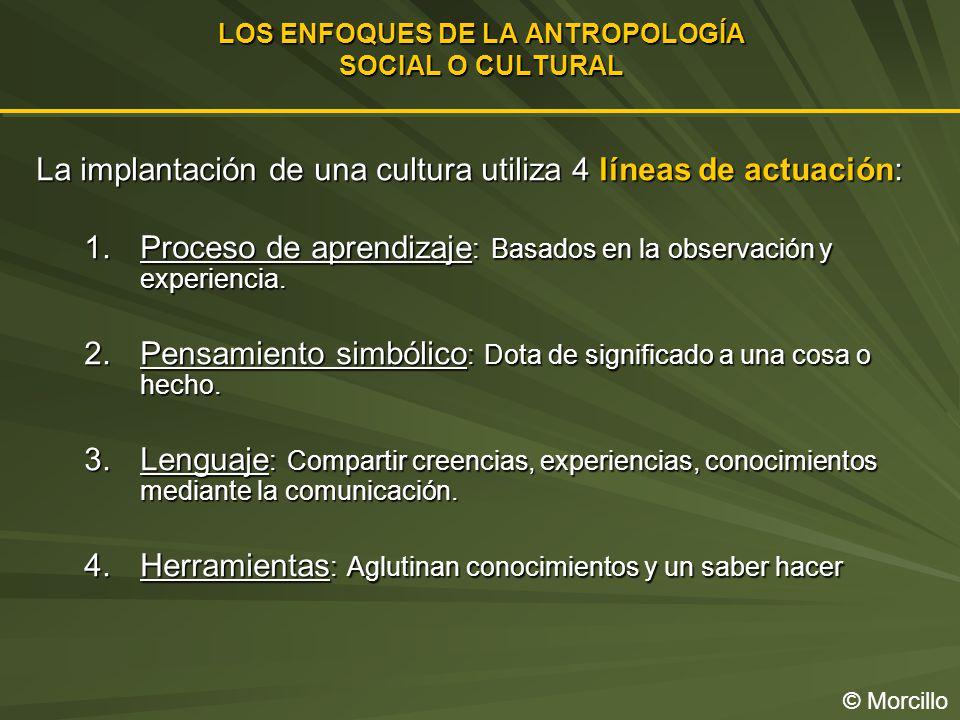 LOS ENFOQUES DE LA ANTROPOLOGÍA SOCIAL O CULTURAL
