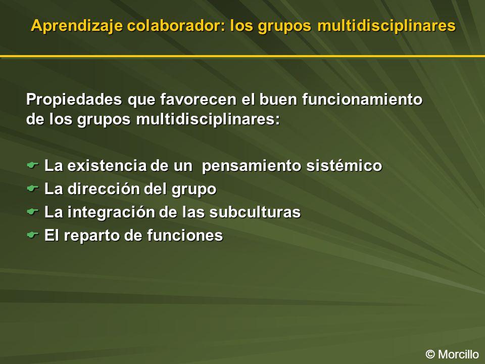 Aprendizaje colaborador: los grupos multidisciplinares