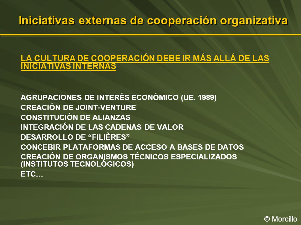 Iniciativas externas de cooperación organizativa