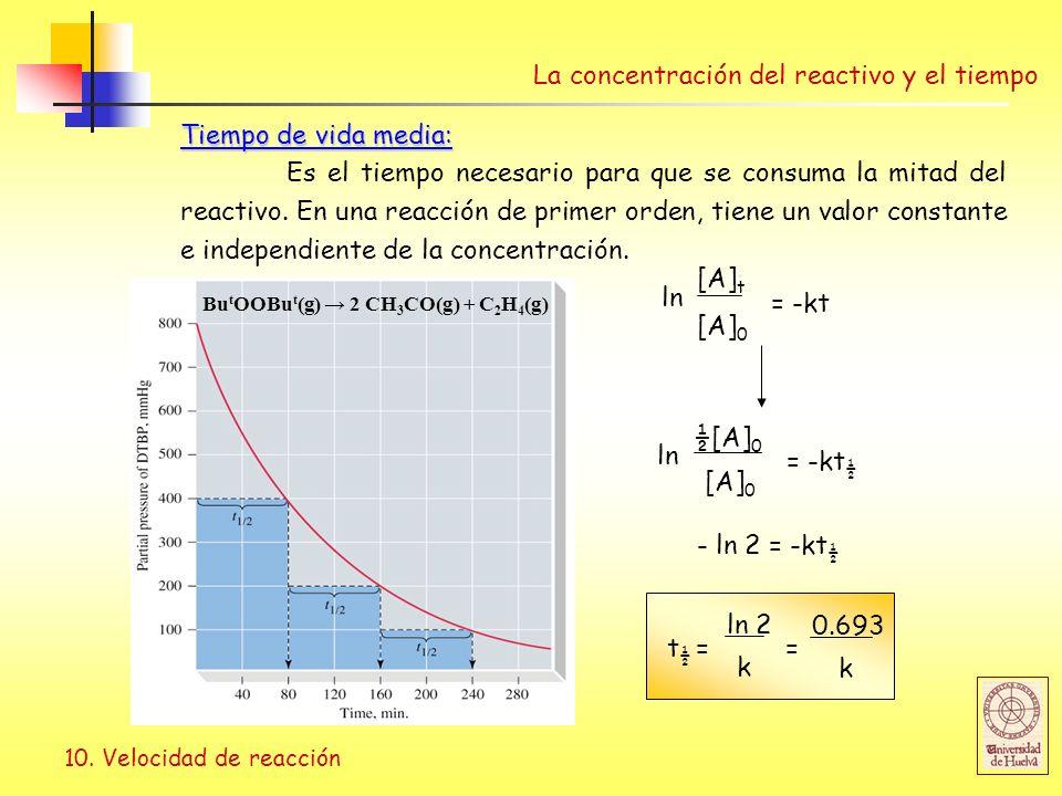 La concentración del reactivo y el tiempo