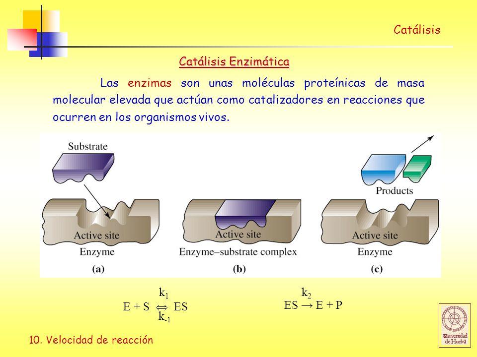 Catálisis Catálisis Enzimática.