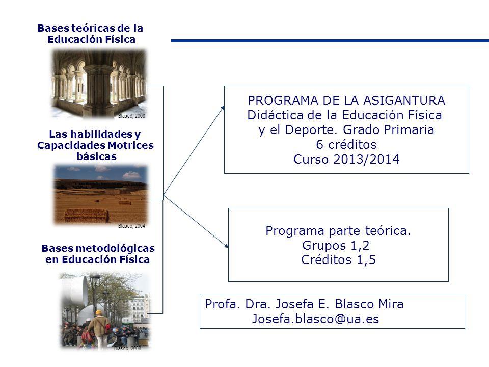 PROGRAMA DE LA ASIGANTURA Didáctica de la Educación Física
