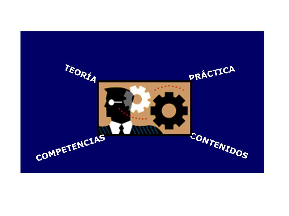 TEORÍA PRÁCTICA CONTENIDOS COMPETENCIAS