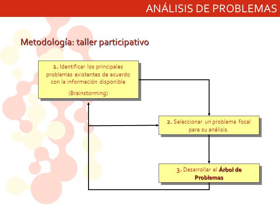 ANÁLISIS DE PROBLEMAS Metodología: taller participativo