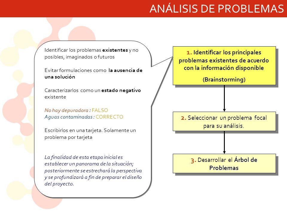 ANÁLISIS DE PROBLEMAS Identificar los problemas existentes y no posibles, imaginados o futuros.