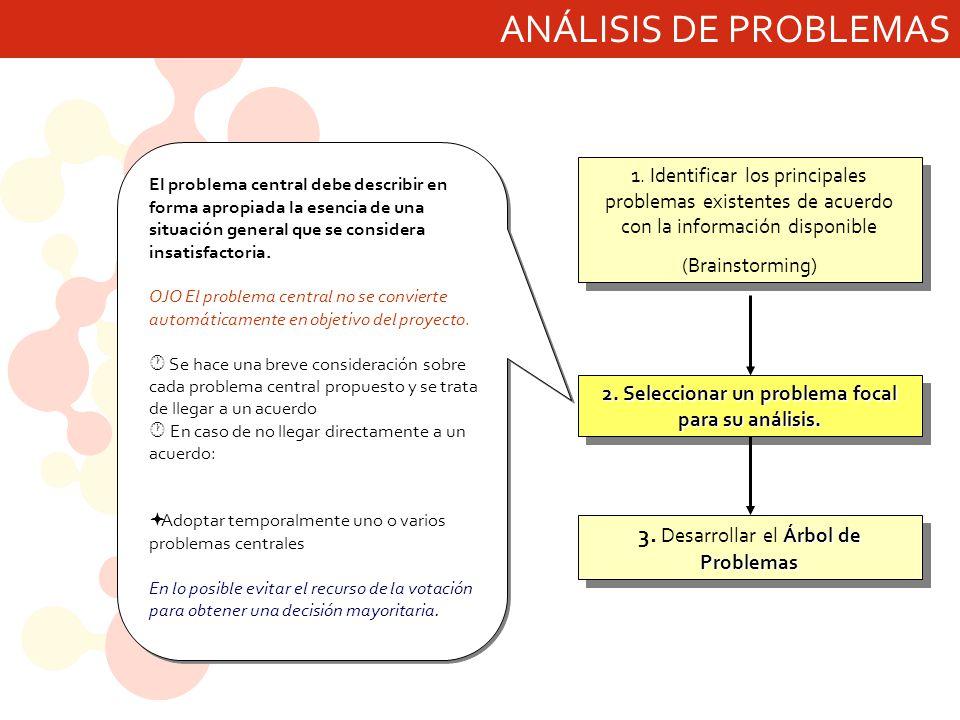 2. Seleccionar un problema focal para su análisis.