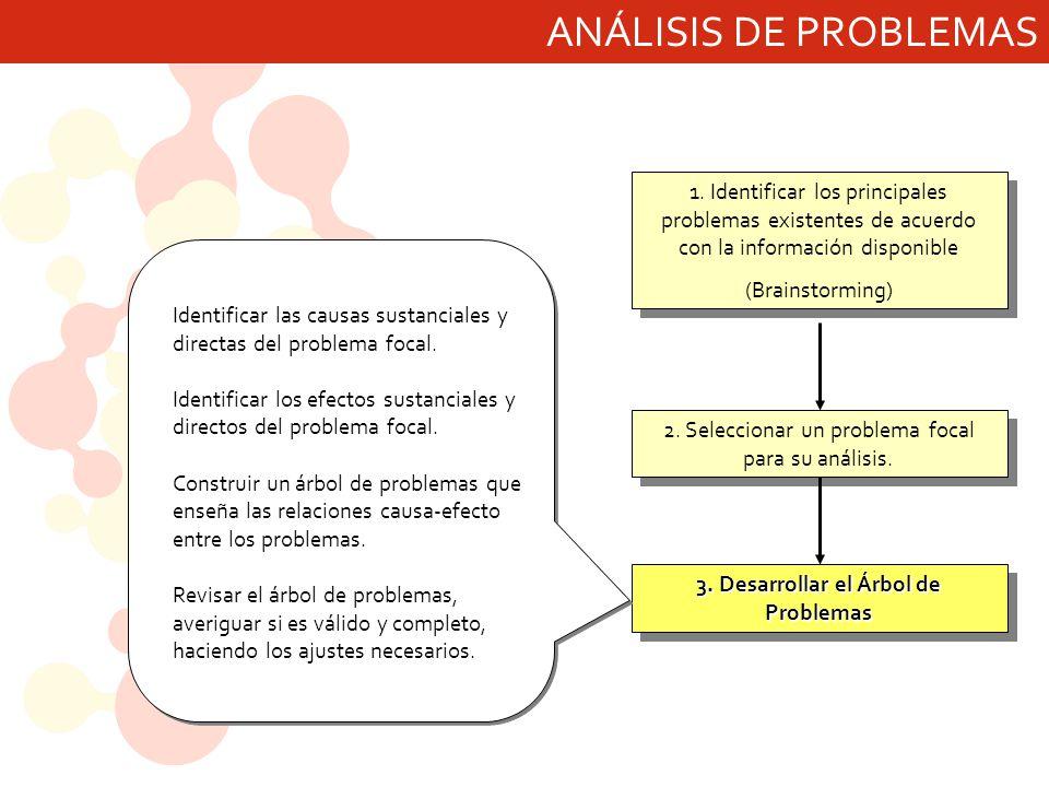 3. Desarrollar el Árbol de Problemas