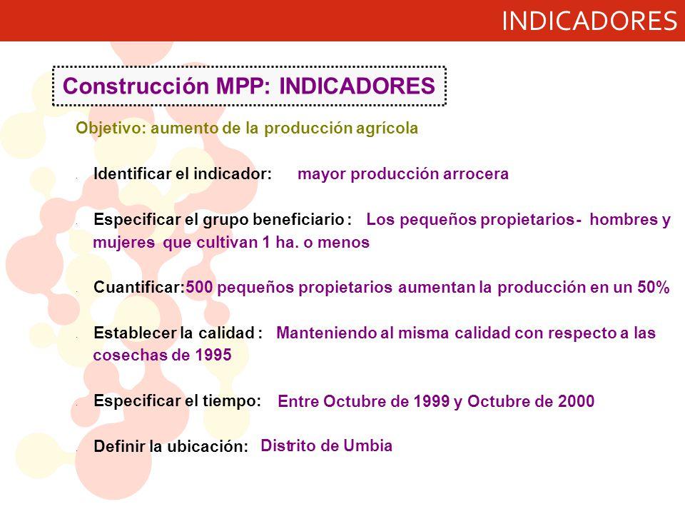 Construcción MPP: INDICADORES mayor producción arrocera