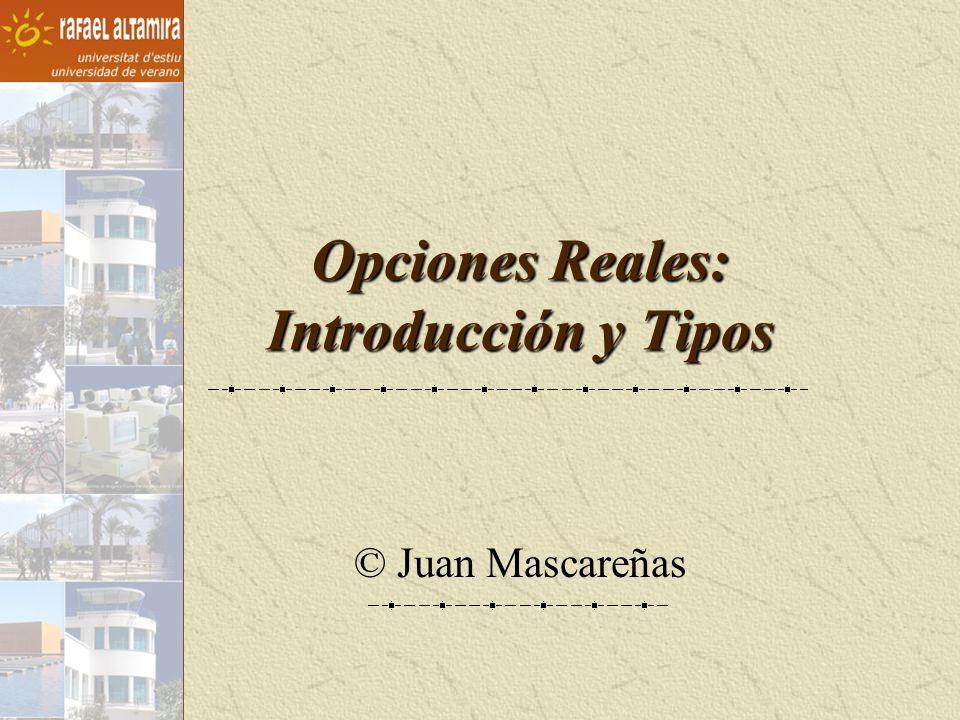 Opciones Reales: Introducción y Tipos