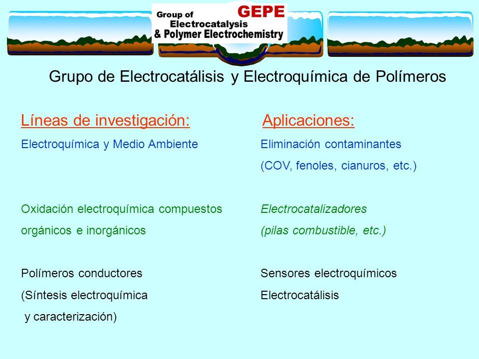 Grupo de Electrocatálisis y Electroquímica de Polímeros