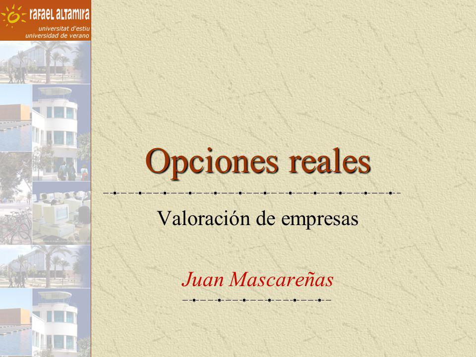 Valoración de empresas Juan Mascareñas