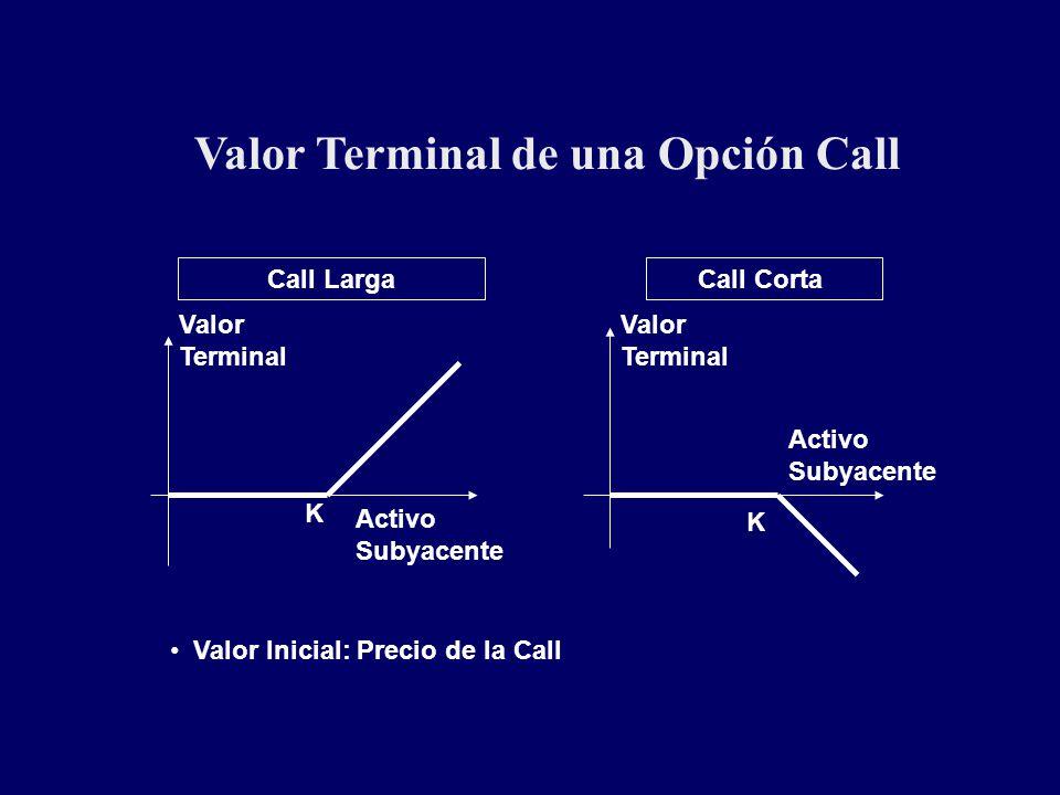 Valor Terminal de una Opción Call