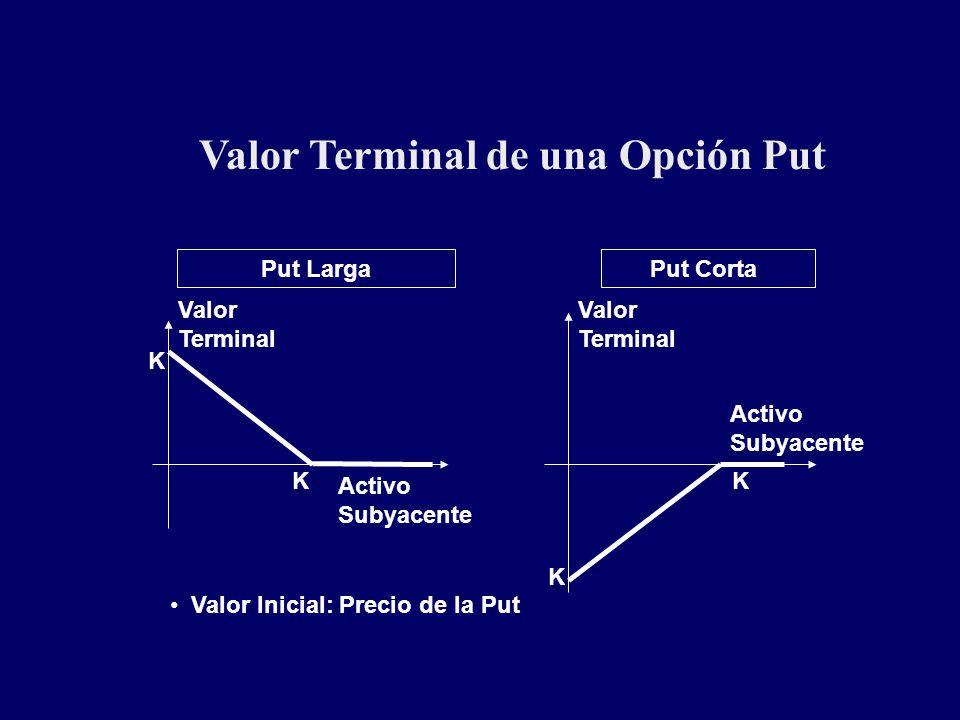 Valor Terminal de una Opción Put