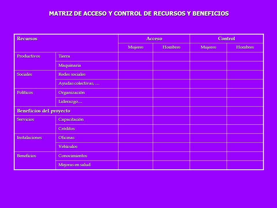 MATRIZ DE ACCESO Y CONTROL DE RECURSOS Y BENEFICIOS