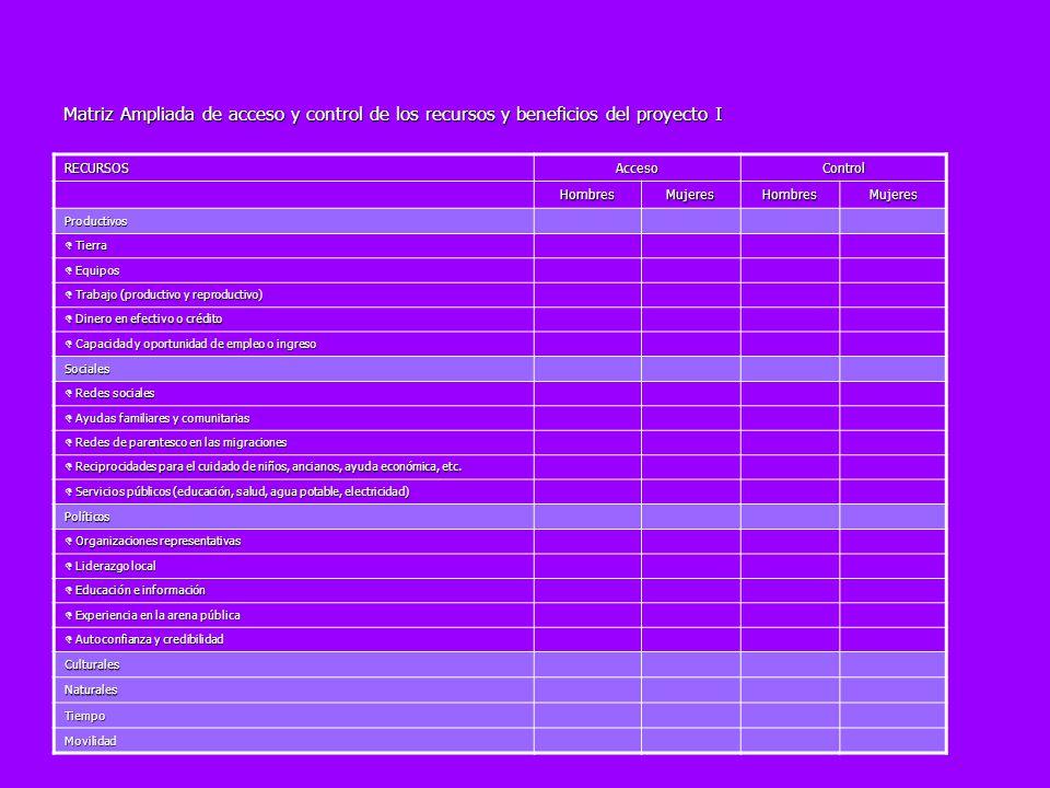 Matriz Ampliada de acceso y control de los recursos y beneficios del proyecto I