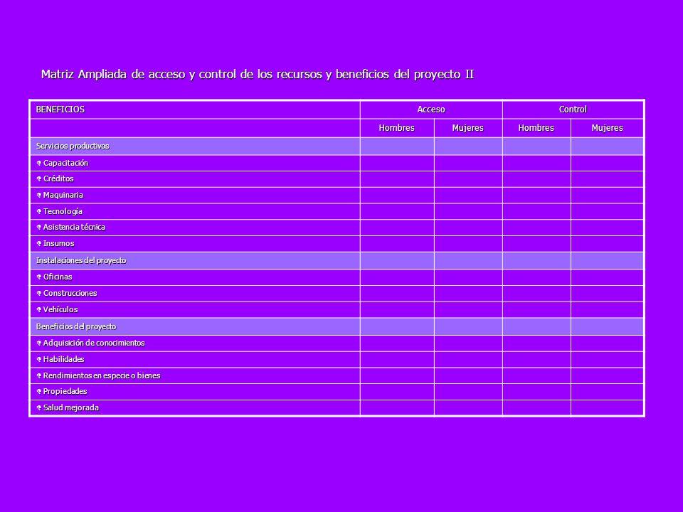 Matriz Ampliada de acceso y control de los recursos y beneficios del proyecto II