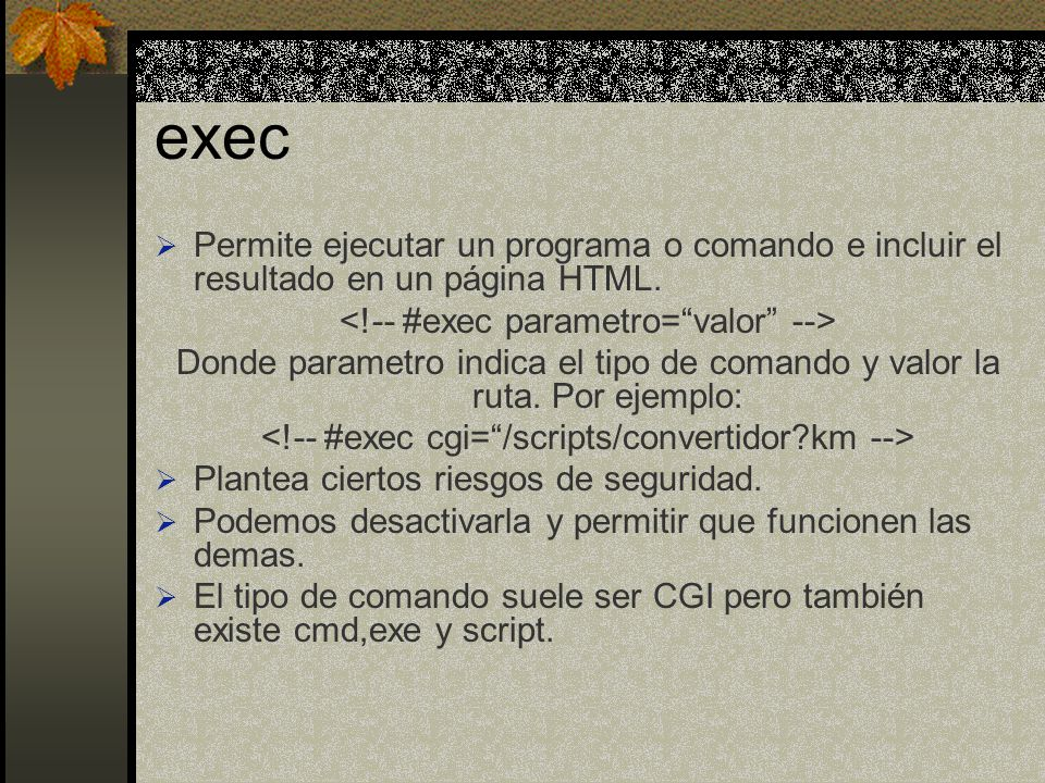 exec Permite ejecutar un programa o comando e incluir el resultado en un página HTML. <!-- #exec parametro= valor -->
